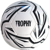 Футболна топка SPARTAN Trophy 4